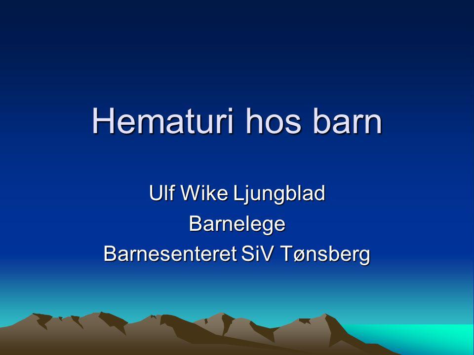 Ulf Wike Ljungblad Barnelege Barnesenteret SiV Tønsberg