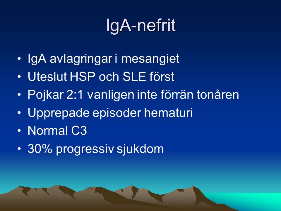 IgA-nefrit IgA avlagringar i mesangiet Uteslut HSP och SLE först