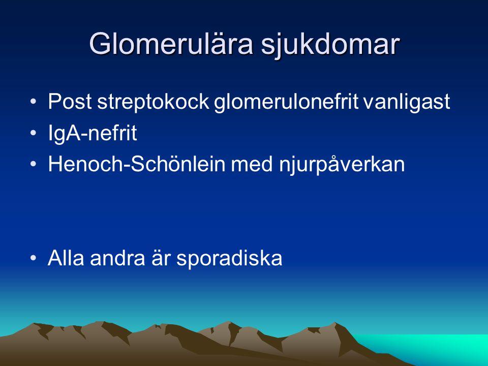 Glomerulära sjukdomar