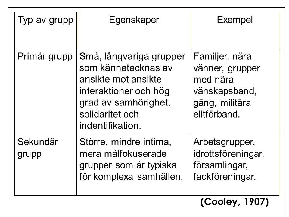 Typ av grupp Egenskaper. Exempel. Primär grupp.