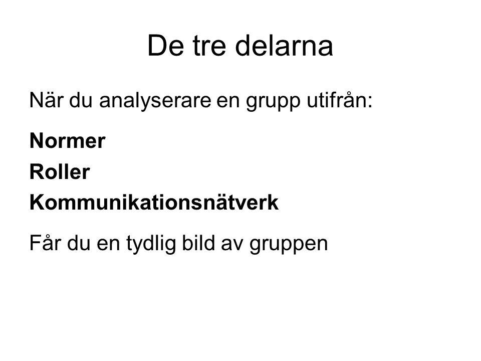 De tre delarna När du analyserare en grupp utifrån: Normer Roller