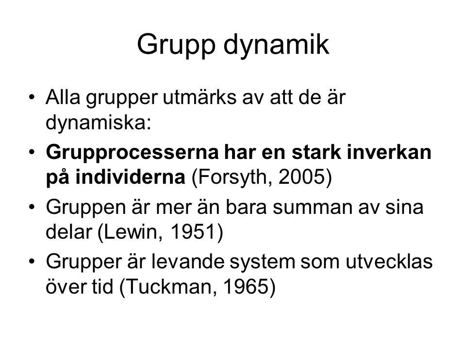Grupp dynamik Alla grupper utmärks av att de är dynamiska: