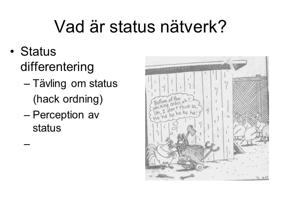 Vad är status nätverk Status differentering Tävling om status