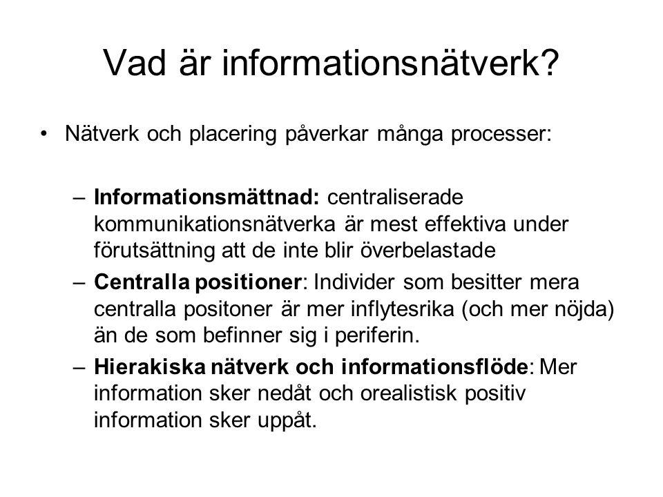 Vad är informationsnätverk