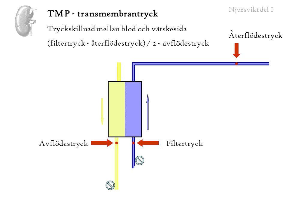 TMP - transmembrantryck