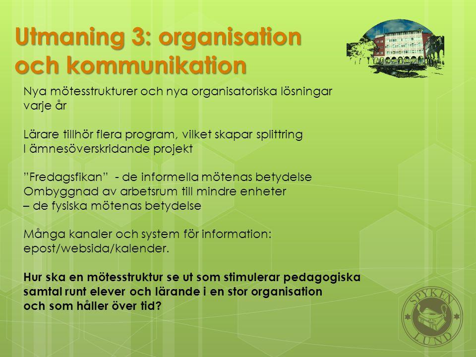Utmaning 3: organisation och kommunikation
