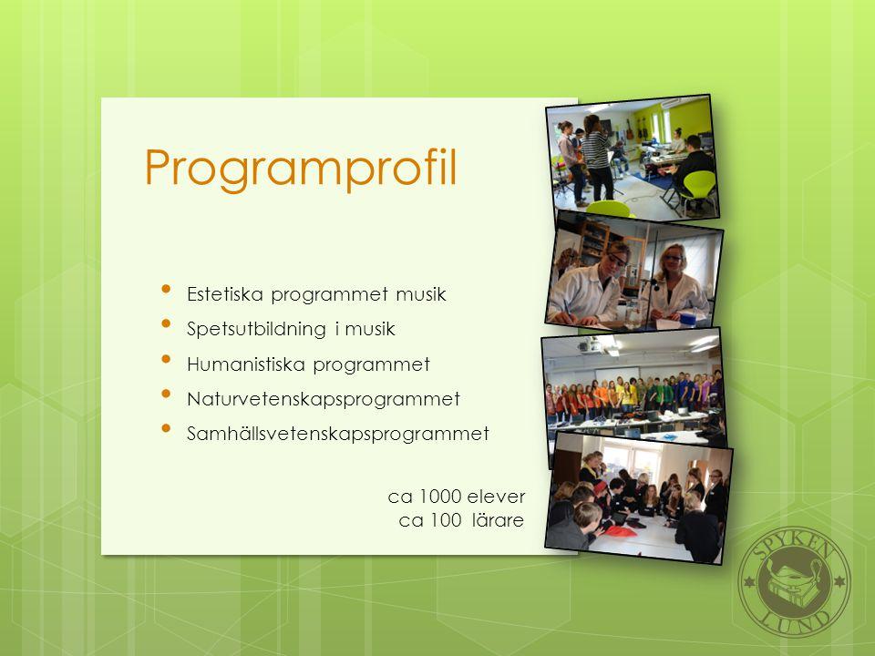 Programprofil Estetiska programmet musik Spetsutbildning i musik