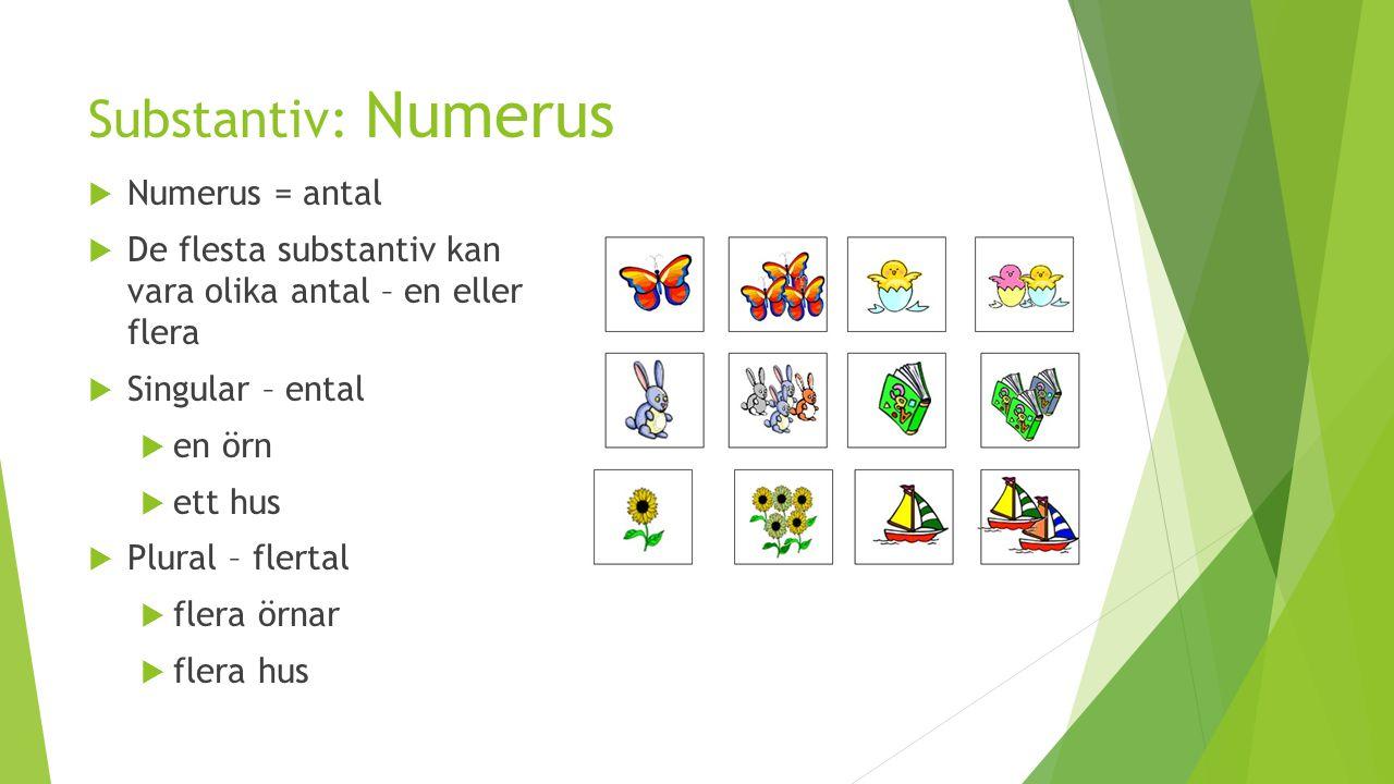 Substantiv: Numerus Numerus = antal