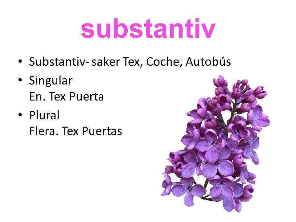 substantiv Substantiv- saker Tex, Coche, Autobús