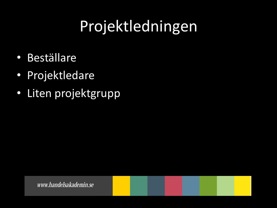 Projektledningen Beställare Projektledare Liten projektgrupp