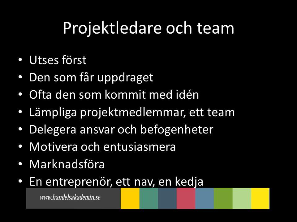 Projektledare och team