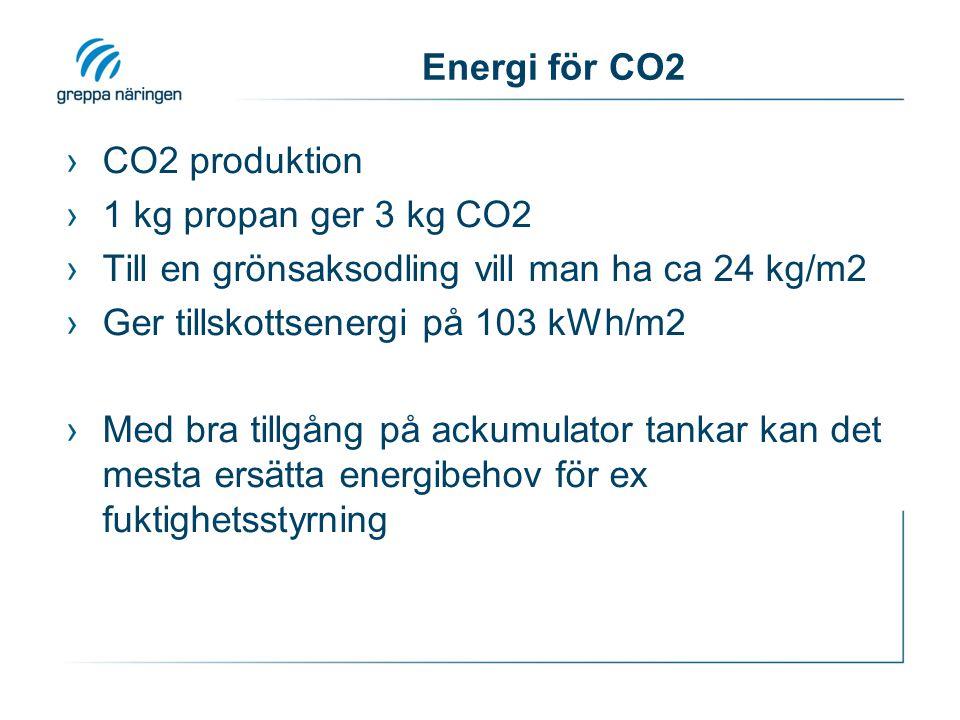 Energi för CO2 CO2 produktion. 1 kg propan ger 3 kg CO2. Till en grönsaksodling vill man ha ca 24 kg/m2.