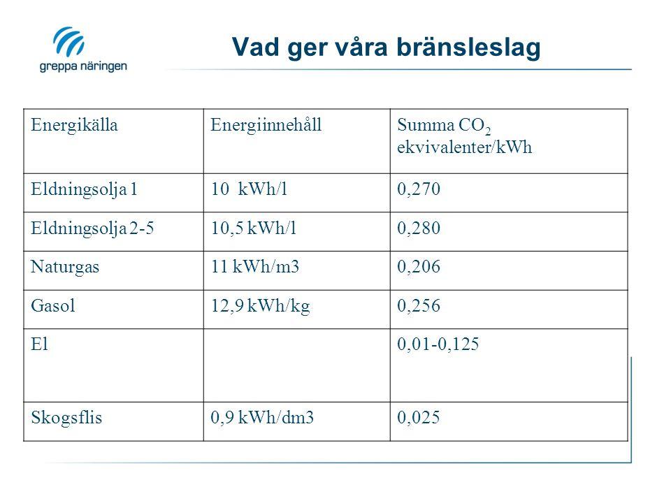 Vad ger våra bränsleslag
