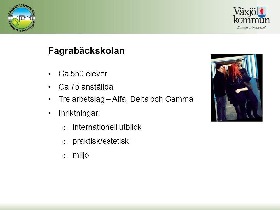 Fagrabäckskolan Ca 550 elever Ca 75 anställda