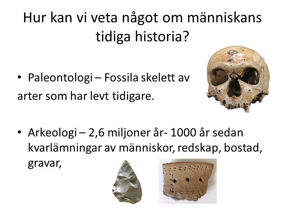 Hur kan vi veta något om människans tidiga historia