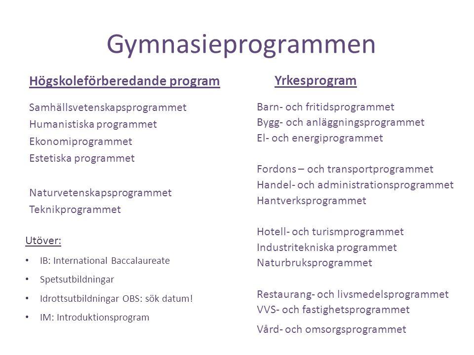 Gymnasieprogrammen Yrkesprogram Högskoleförberedande program
