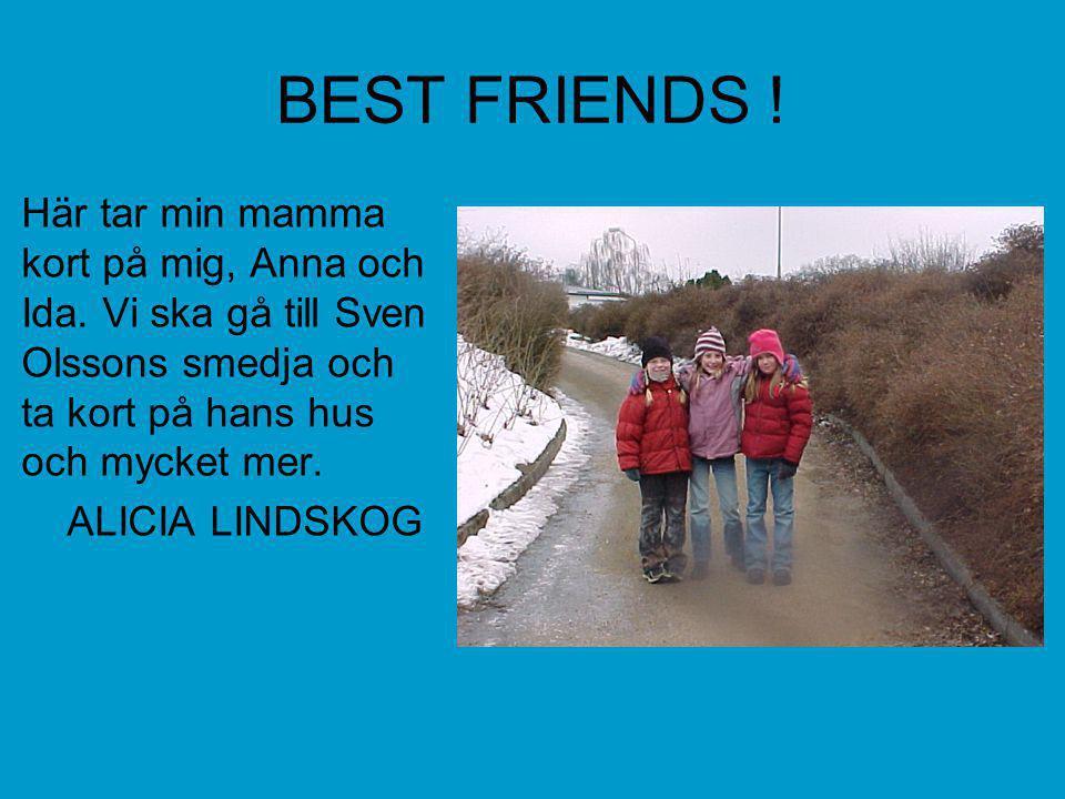 BEST FRIENDS ! Här tar min mamma kort på mig, Anna och Ida. Vi ska gå till Sven Olssons smedja och ta kort på hans hus och mycket mer.