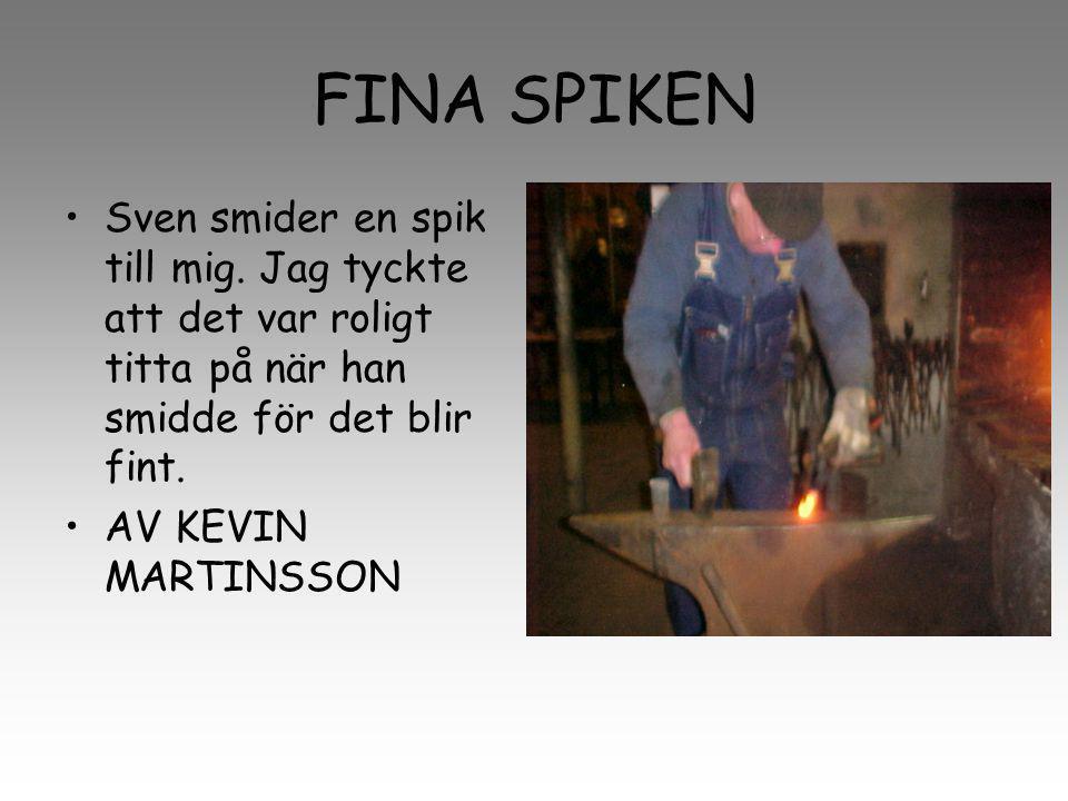 FINA SPIKEN Sven smider en spik till mig. Jag tyckte att det var roligt titta på när han smidde för det blir fint.