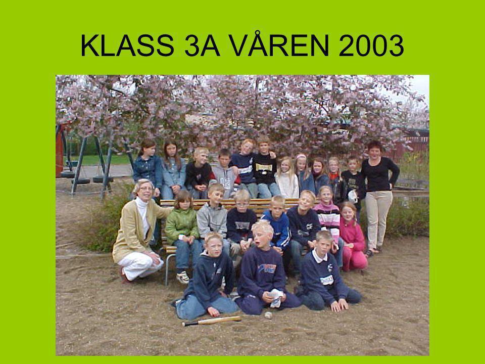 KLASS 3A VÅREN 2003