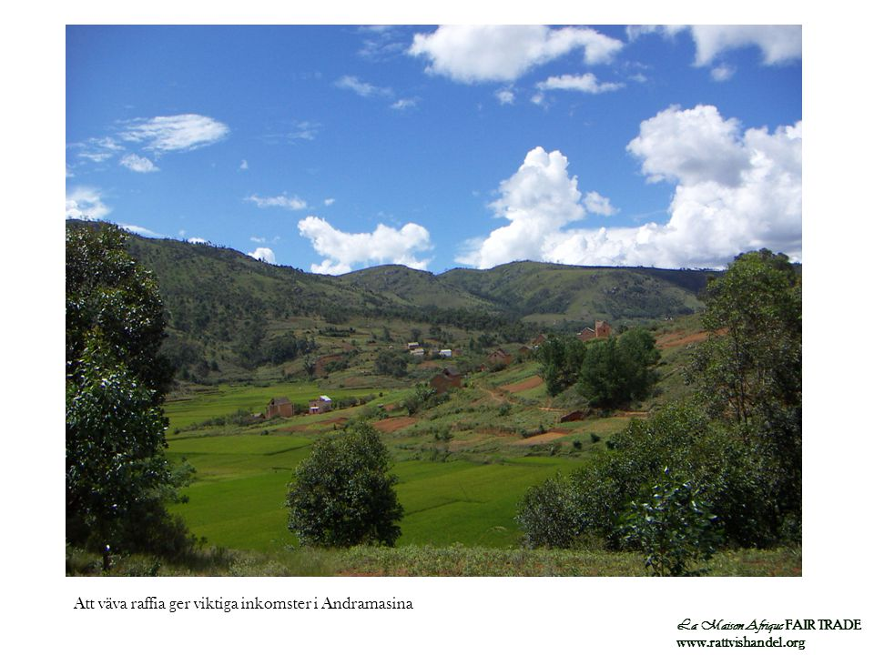Att väva raffia ger viktiga inkomster i Andramasina