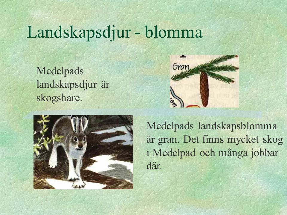 Landskapsdjur - blomma