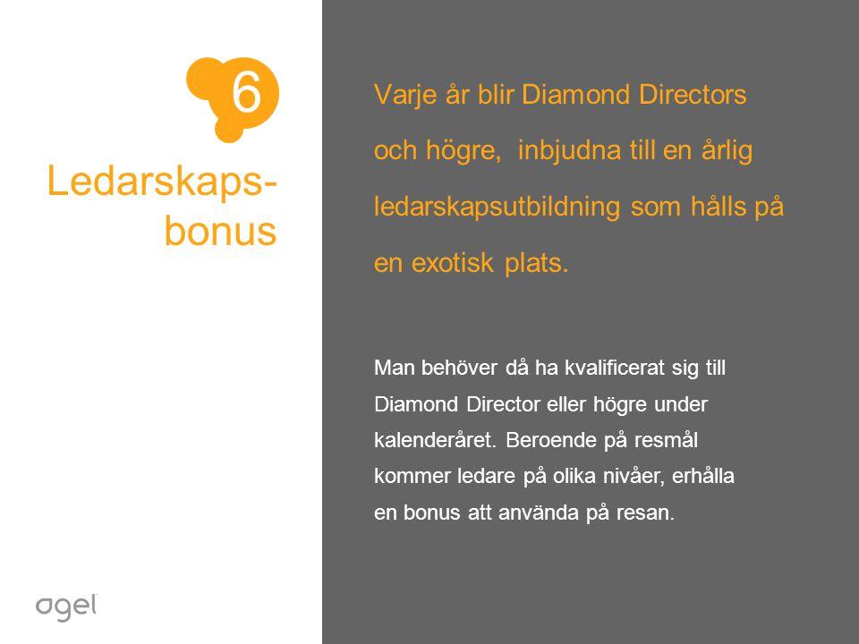 6 Varje år blir Diamond Directors och högre, inbjudna till en årlig ledarskapsutbildning som hålls på en exotisk plats.
