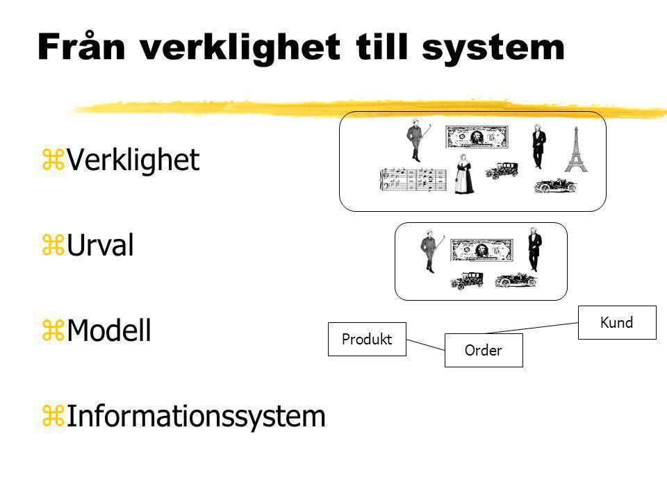 Från verklighet till system