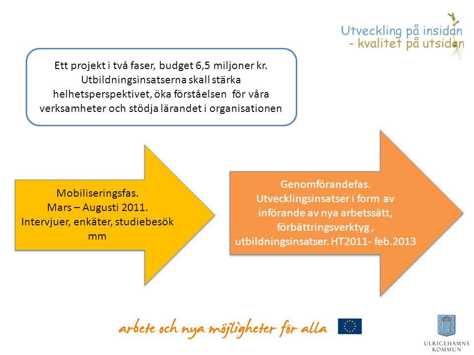 Ett projekt i två faser, budget 6,5 miljoner kr