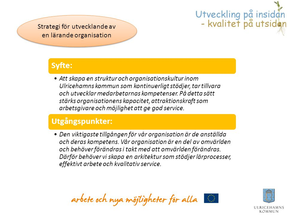 Strategi för utvecklande av en lärande organisation