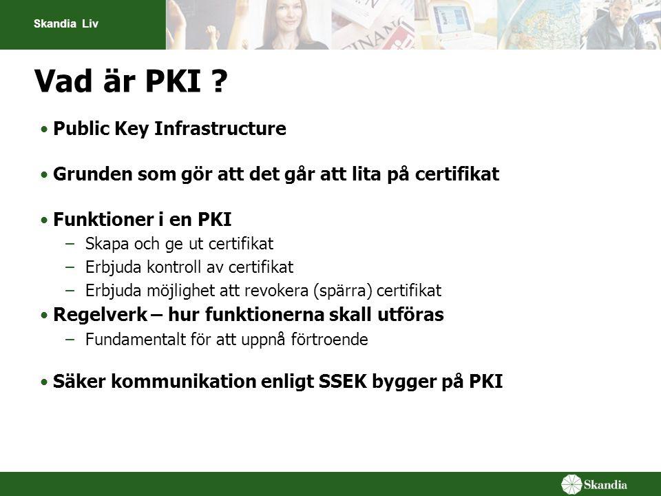 Vad är PKI Public Key Infrastructure