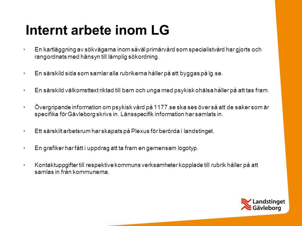 Internt arbete inom LG