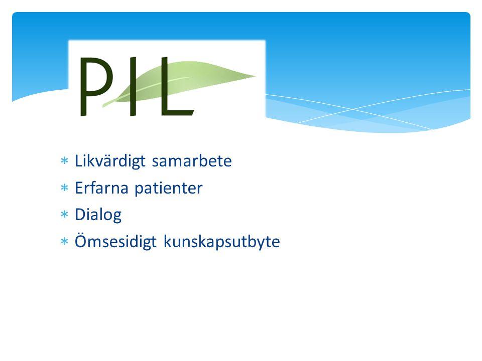 Likvärdigt samarbete Erfarna patienter Dialog Ömsesidigt kunskapsutbyte