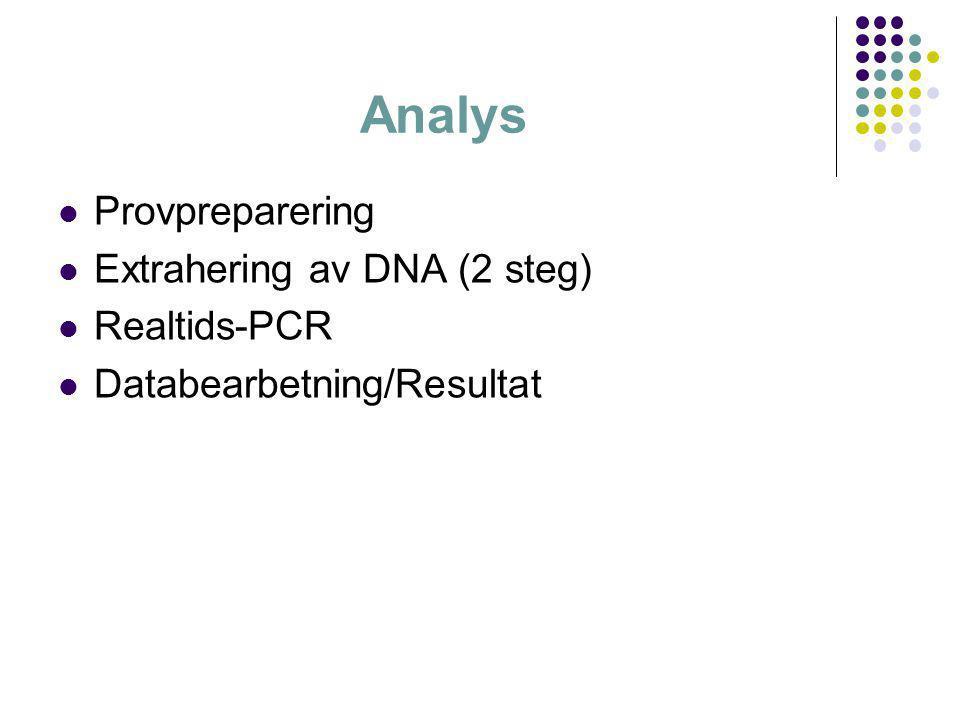 Analys Provpreparering Extrahering av DNA (2 steg) Realtids-PCR