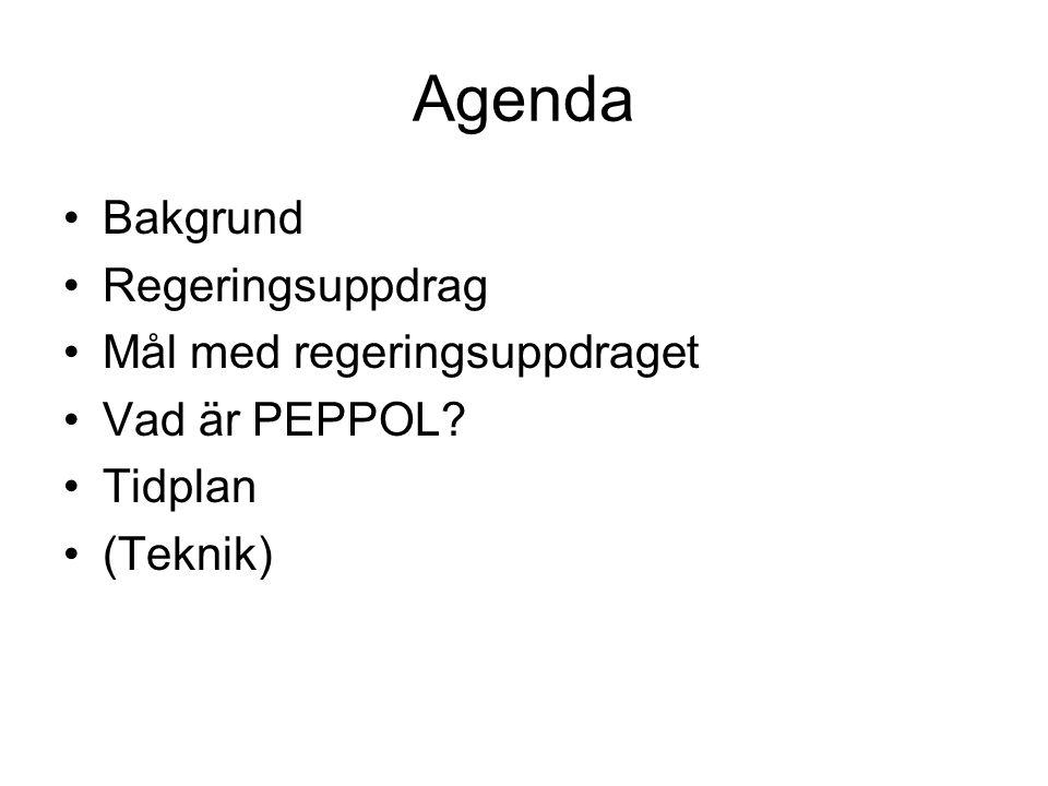 Agenda Bakgrund Regeringsuppdrag Mål med regeringsuppdraget