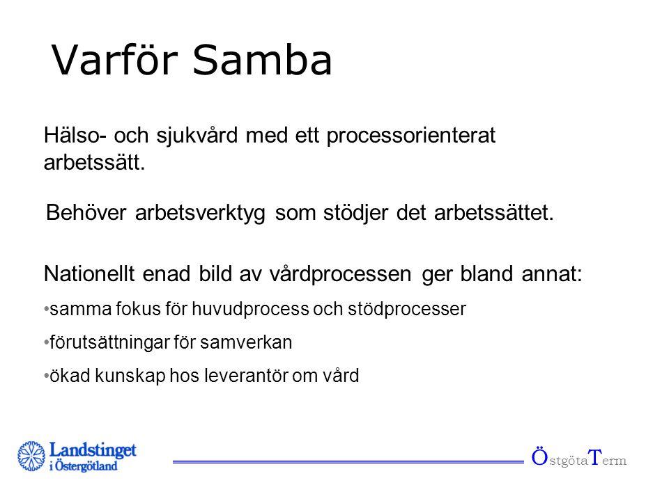 Varför Samba Hälso- och sjukvård med ett processorienterat arbetssätt.
