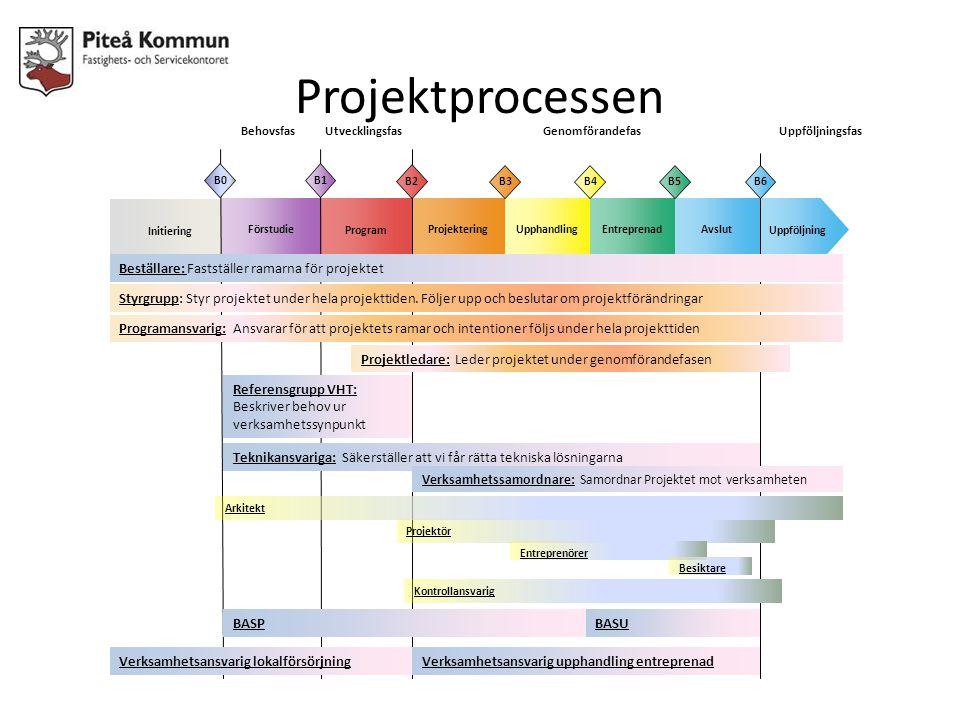 Projektprocessen Beställare: Fastställer ramarna för projektet