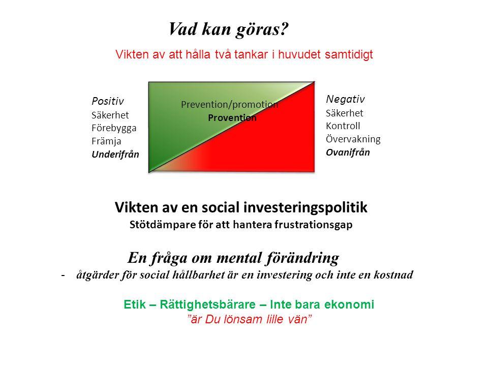 Vad kan göras Vikten av en social investeringspolitik