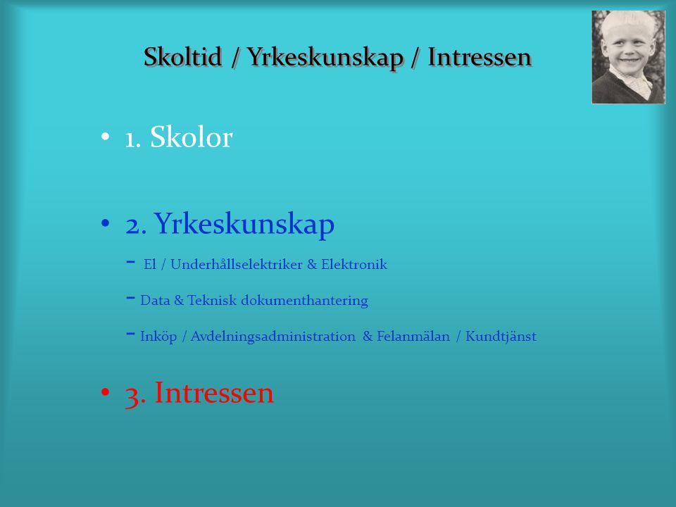 Skoltid / Yrkeskunskap / Intressen