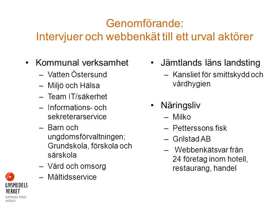Genomförande: Intervjuer och webbenkät till ett urval aktörer