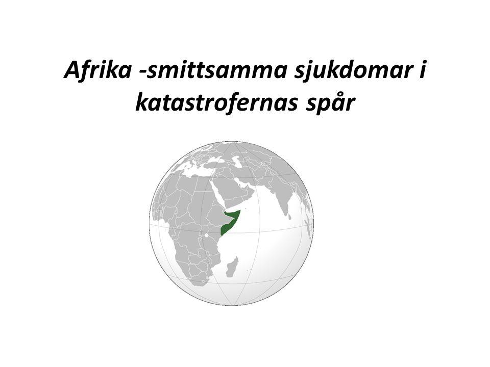 Afrika -smittsamma sjukdomar i katastrofernas spår