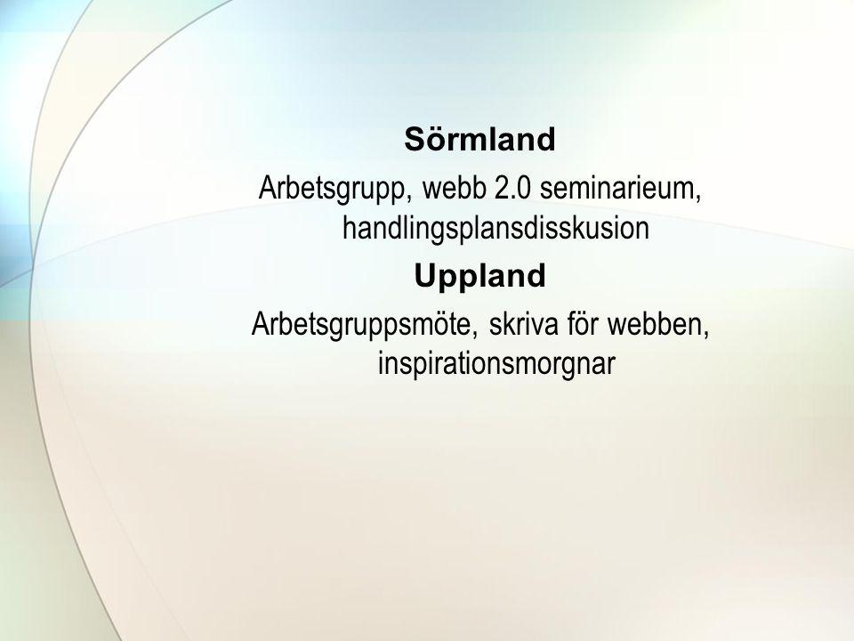 Arbetsgrupp, webb 2.0 seminarieum, handlingsplansdisskusion Uppland