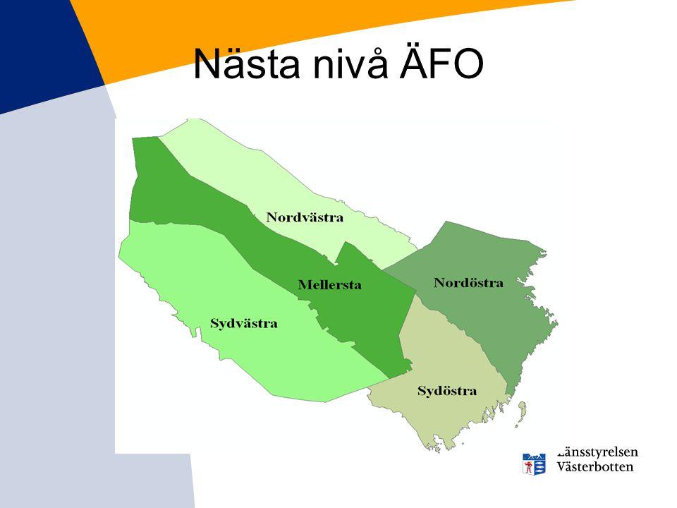 Nästa nivå ÄFO