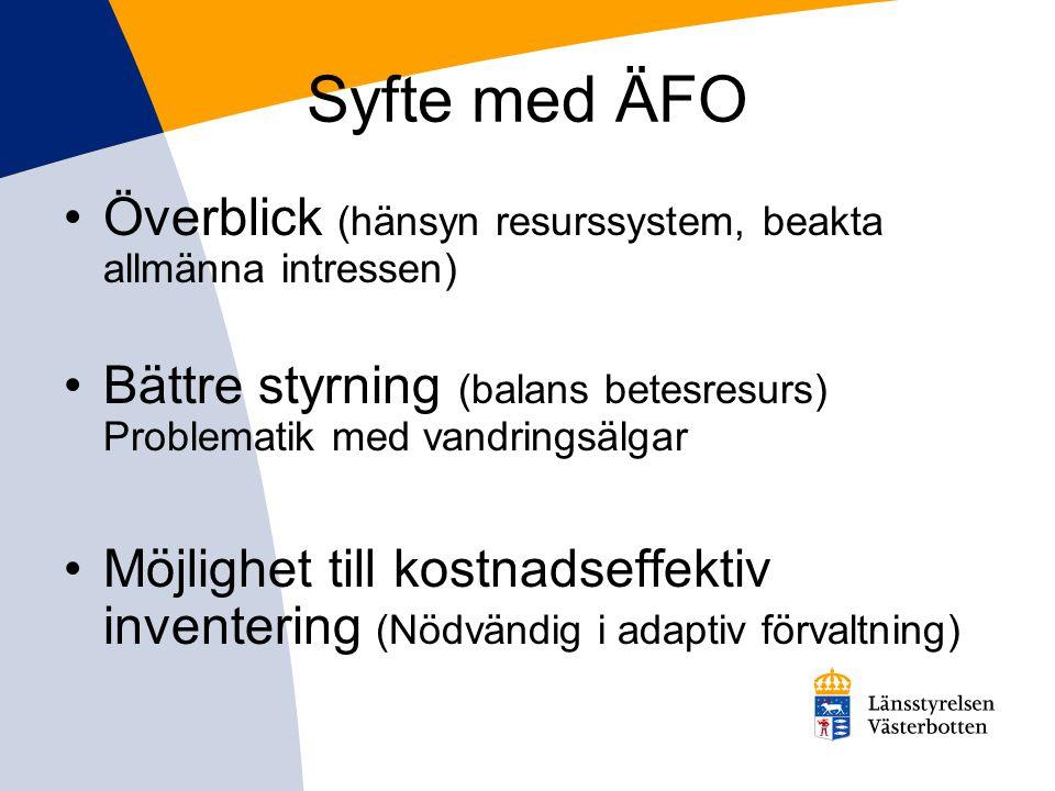 Syfte med ÄFO Överblick (hänsyn resurssystem, beakta allmänna intressen) Bättre styrning (balans betesresurs) Problematik med vandringsälgar.