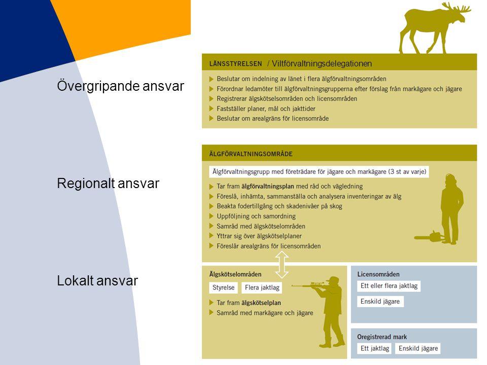 Övergripande ansvar Regionalt ansvar Lokalt ansvar