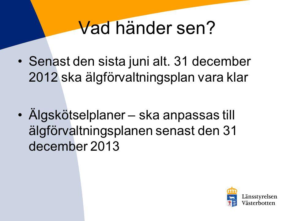 Vad händer sen Senast den sista juni alt. 31 december 2012 ska älgförvaltningsplan vara klar.