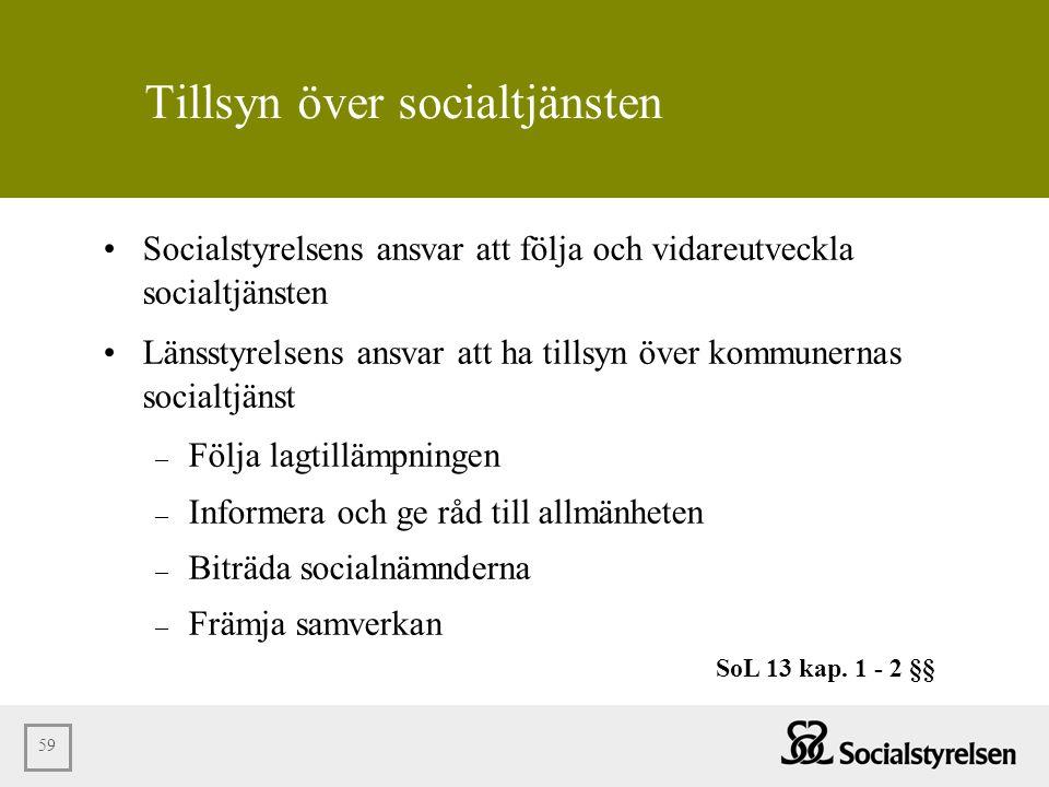 Tillsyn över socialtjänsten