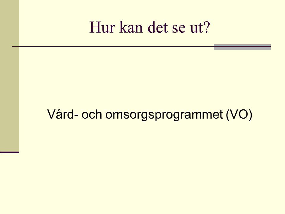 Vård- och omsorgsprogrammet (VO)
