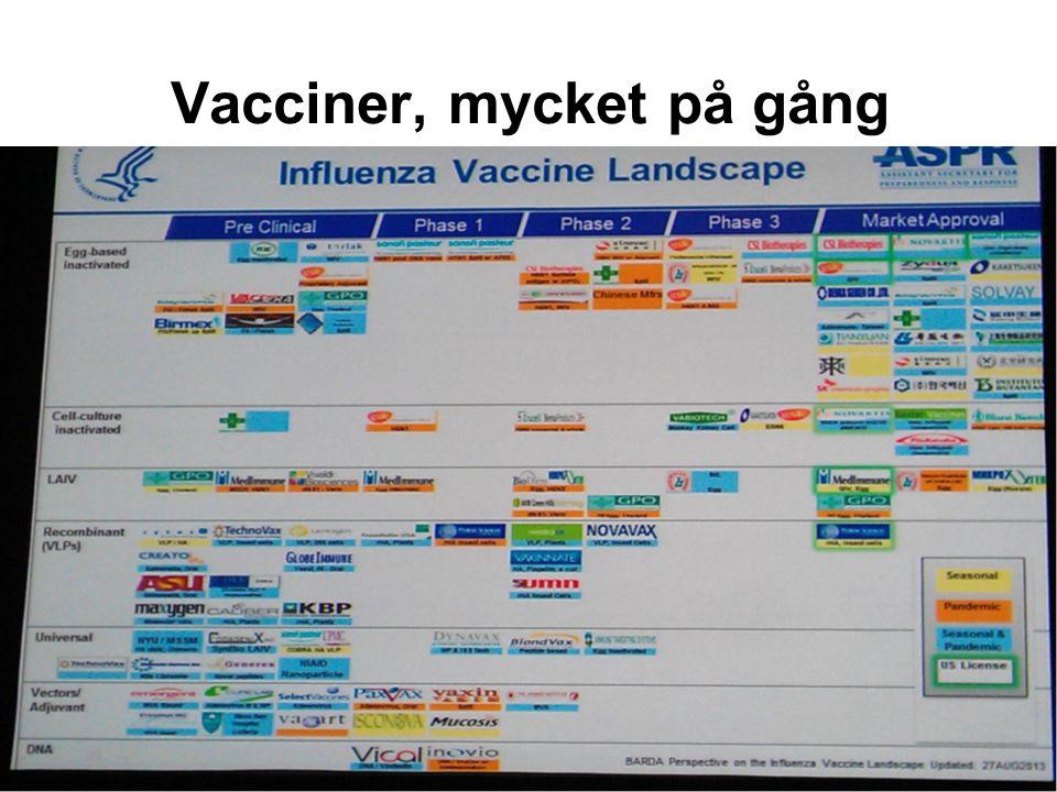 Vacciner, mycket på gång