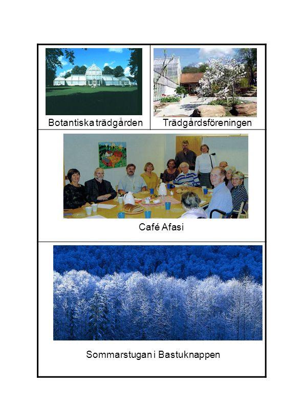 Botantiska trädgården Trädgårdsföreningen
