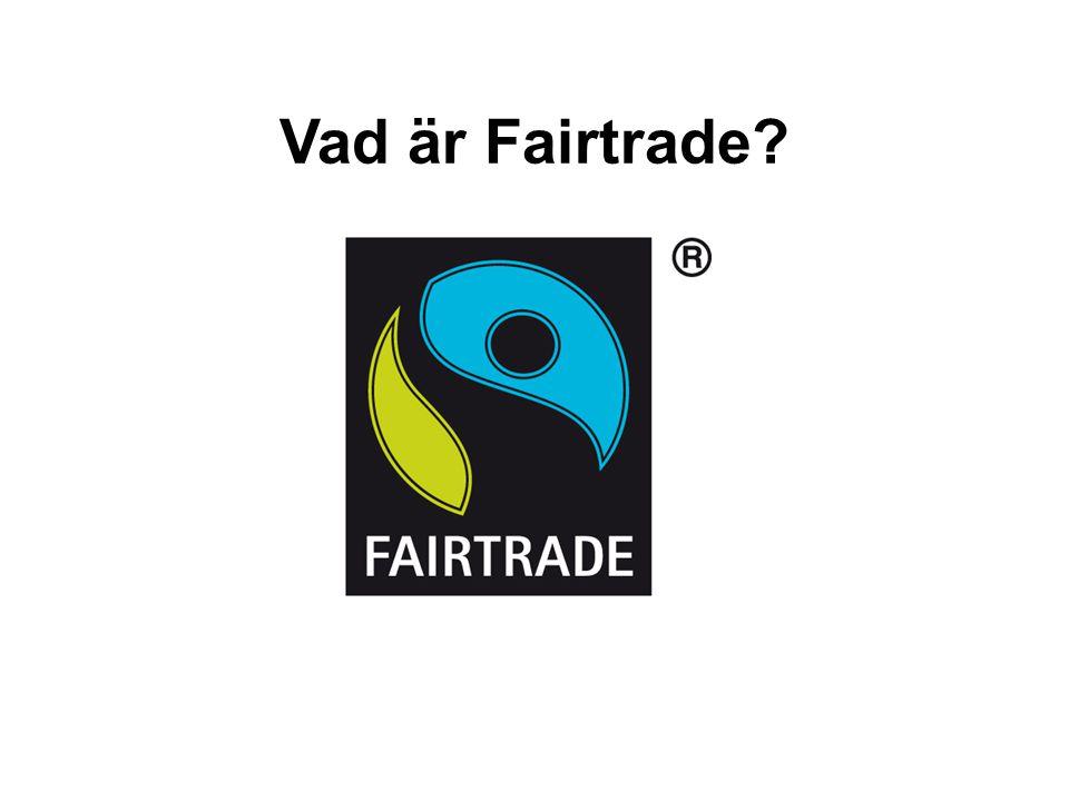 Vad är Fairtrade 12 12